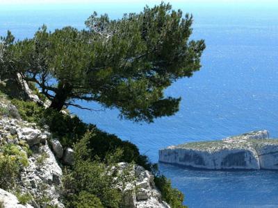 le parc national des calanques guide tourisme amp vacances